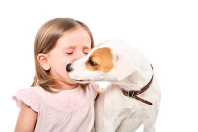 泣いてる少女を気遣う犬