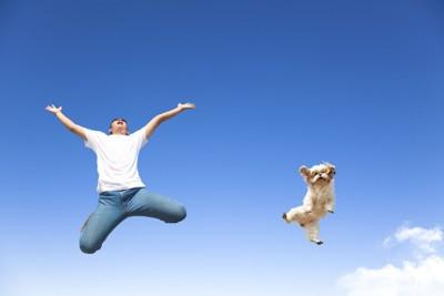 ジャンプする犬と人間