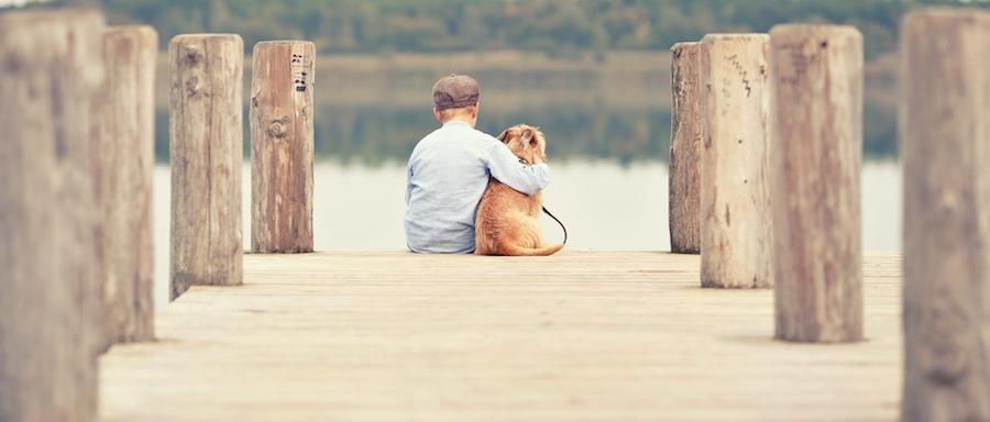 一緒に座る犬と少年の後ろ姿