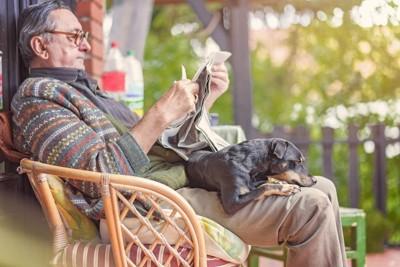 男性の膝の上でくつろぐ犬