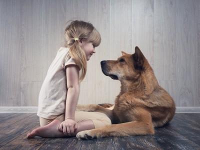 向き合って見つめ合う女の子と犬