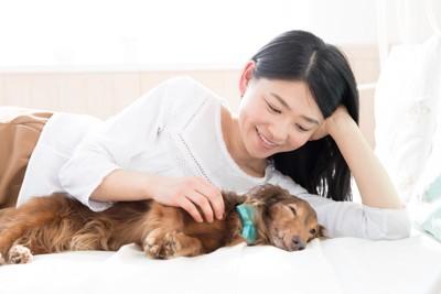 女性の横でウトウトする犬