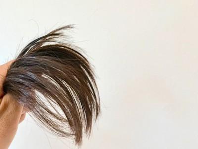 #髪の毛#