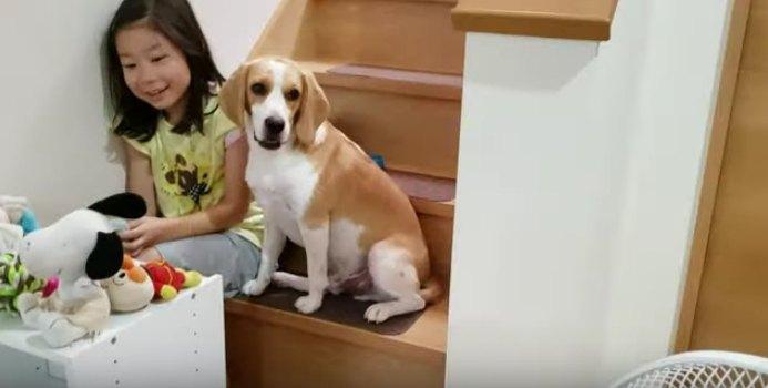 階段に座るうぃるくん