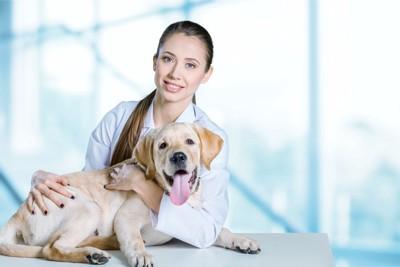 女性獣医師と犬