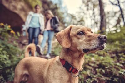 二人の人と犬