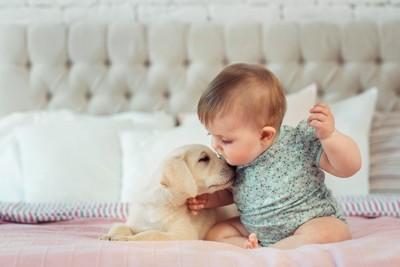 赤ちゃんと子犬