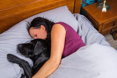 ベッドで黒ラブと眠る女性