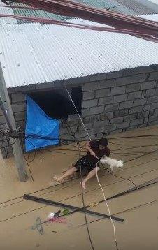 ロープがはずれて水中に放り出される人と犬