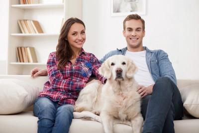犬と大人2人