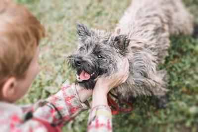 屋外で犬を撫でて褒める男の子
