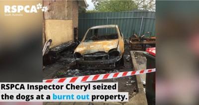 焼け跡に燃えた車