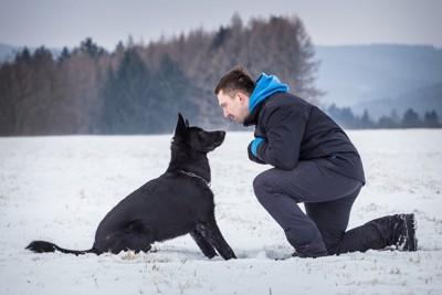 雪の中で向き合う黒い犬と男性