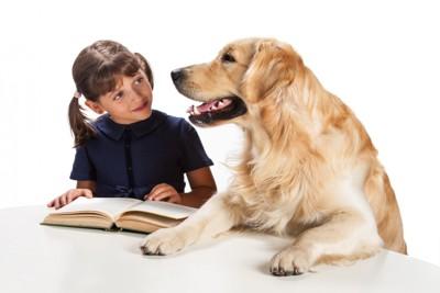 本を広げた女の子とゴールデンレトリーバー