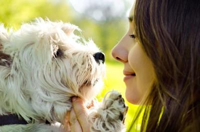 見つめ合う女性とテリア犬