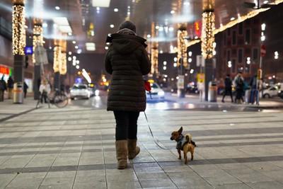 夜道を散歩する女性と犬の後ろ姿