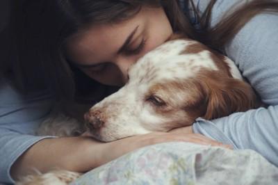 不安な愛犬を抱きしめている飼い主