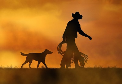 カウボーイと犬のシルエット