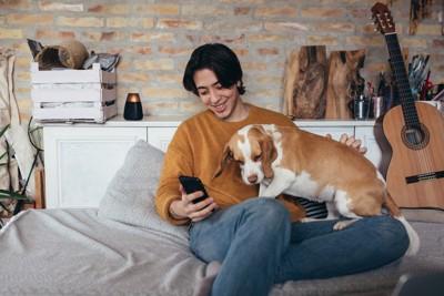 男性の膝の上に乗る犬
