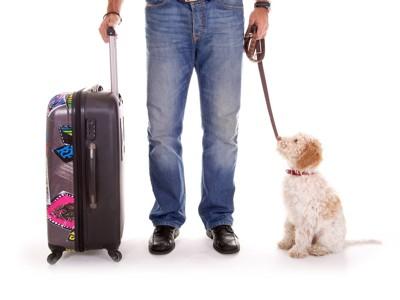 スーツケースを持った犬を連れた人