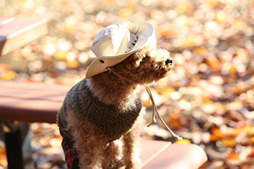 犬用帽子本革かっこいいのにかわいい ウエスタンハット