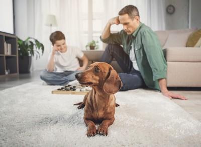 遊んでいる親子と犬