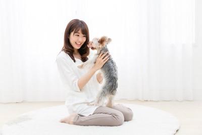 床に座り、犬を抱き上げる女性、ヨーキー