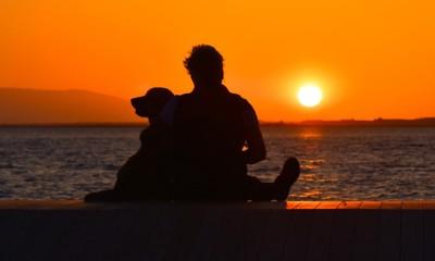 夕暮れ時の人と犬