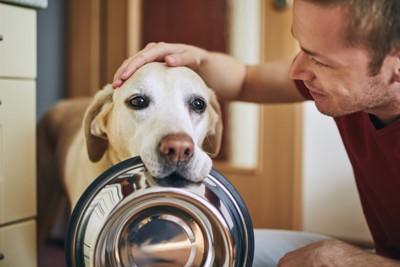 ボウルをくわえた犬と男性