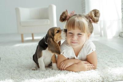 女の子の顔に近づく犬
