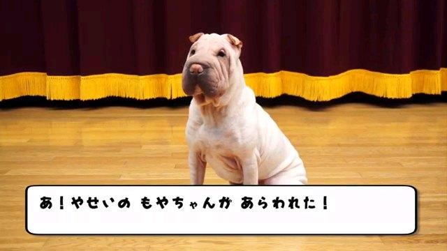 あ!~字幕