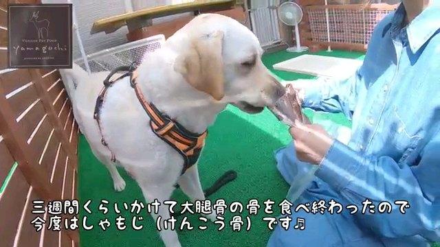 三週間~字幕