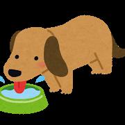 水を飲む犬のイラスト