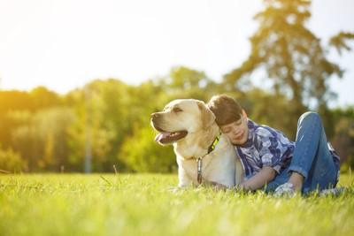 芝生で休むラブラドールと男の子