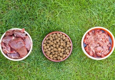 芝生の上に3種の食事
