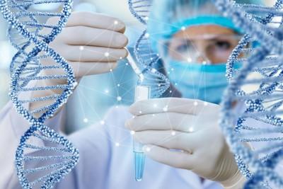 ゲノム研究を行う研究者とDNAモデル