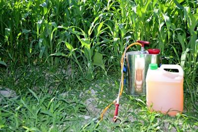 雑草と除草剤