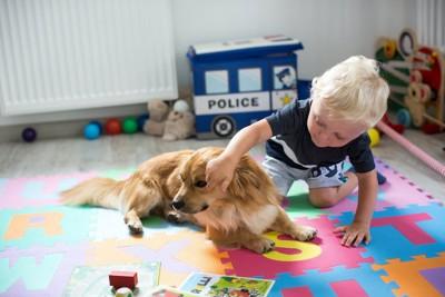 子供にちょっかいを出されている犬