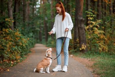 散歩中に指示を出して犬にお座りをさせる女性