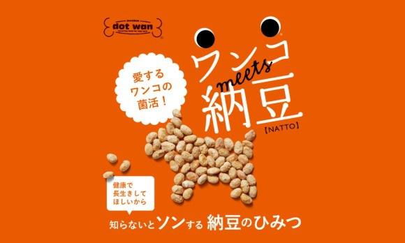 納豆商品画像