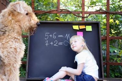 黒板の前で勉強中の女の子と犬