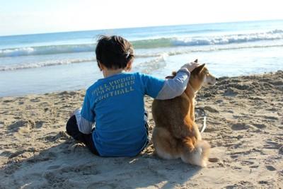 砂浜に座る男の子と柴犬の後ろ姿