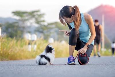 子犬を指導する女性