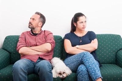 喧嘩する夫婦に挟まれる犬