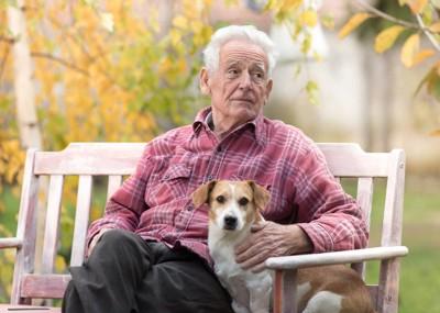 犬とベンチに座る年配の男性