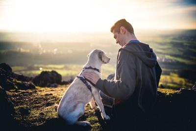 寄り添って景色を見る犬と男性