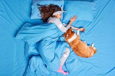 一緒に眠る女性とコーギー