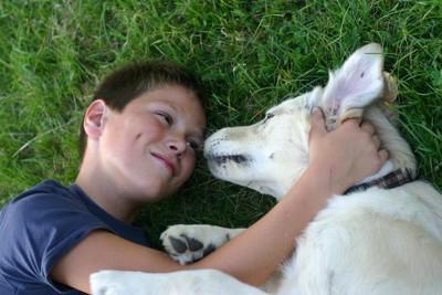 犬に好かれている少年