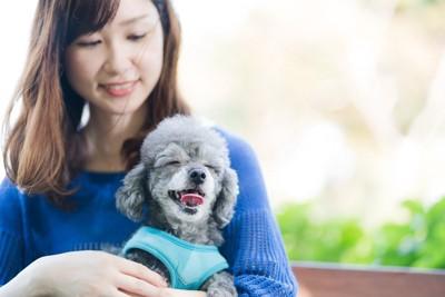 女性の膝の上で笑顔の犬