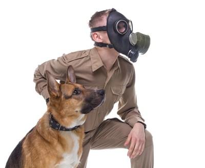 ガスマスクを着けた人とシェパード